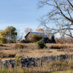 Excerpts from 'The Stone Fences of Door County: Reflections on Agriculture, the Land, and a Family History'